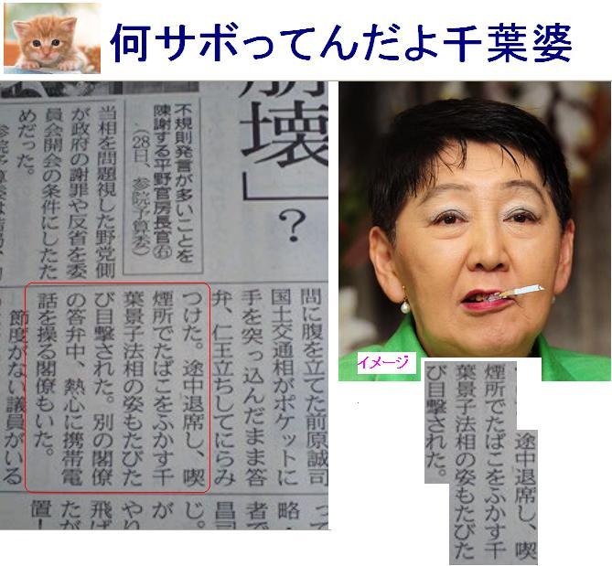 千葉景子: 売国奴・民主党のブー...