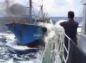 2010.9.7 巡視船みずきに突っ込むミンシンリョウ5179